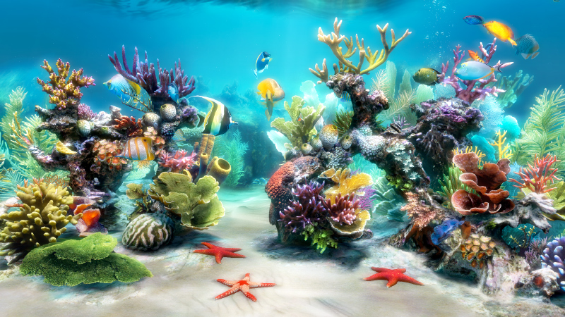 Sim Aquarium FREE! 3.3.33e screenshot
