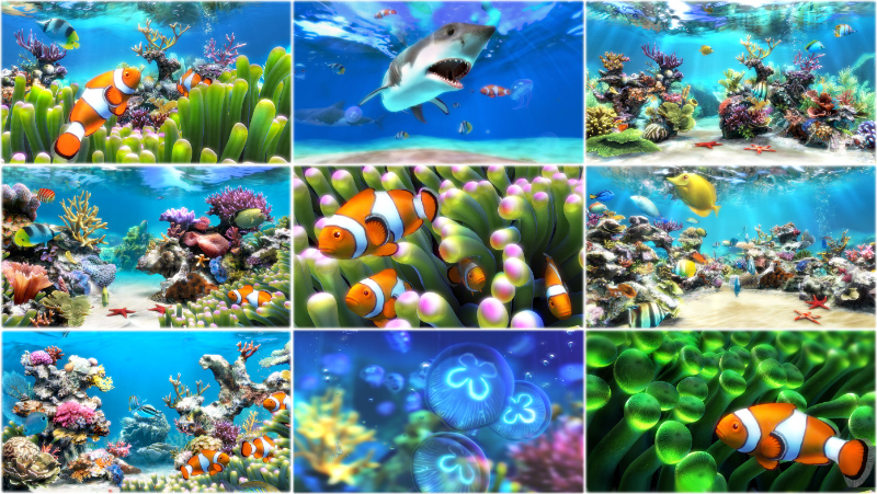 Click to view Sim Aquarium screenshots