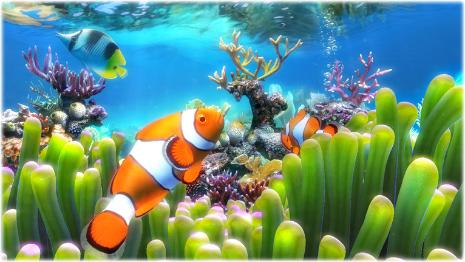 Aquarium Screensavers Windows 7