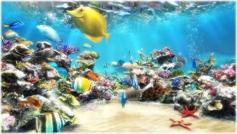 SereneScreen Marine Aquarium s3.jpg