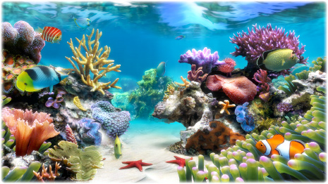 Sim Aquarium Screenshot 3