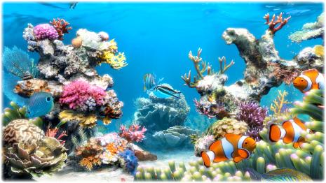 Sim Aquarium Screenshot 5